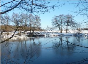 W-Nord - mit  historischem Mühlinghaus-Teich, nicht Ikea! Wie sieht der näcchste Winter  aus?
