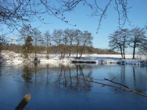 W-Nord: historischer Mühlinghaus-Teich – oder Ikea?
