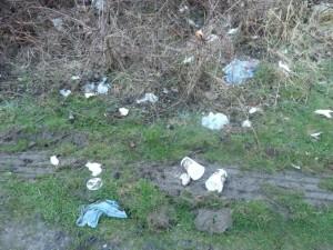 Müll in der Natur - DAS will doch keiner!